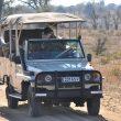 Les parcs à découvrir en voiture dans le continent africain